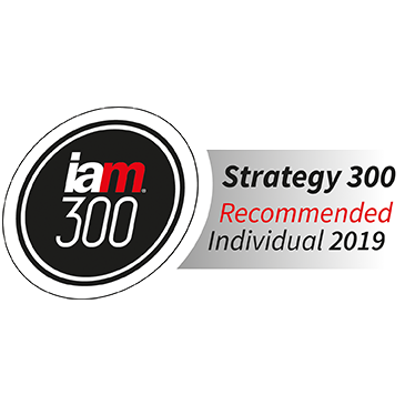 IAM-Strategy-300_recommended-individual_2019_Peter-Chrocziel_BARDEHLE-PAGENBERG.png